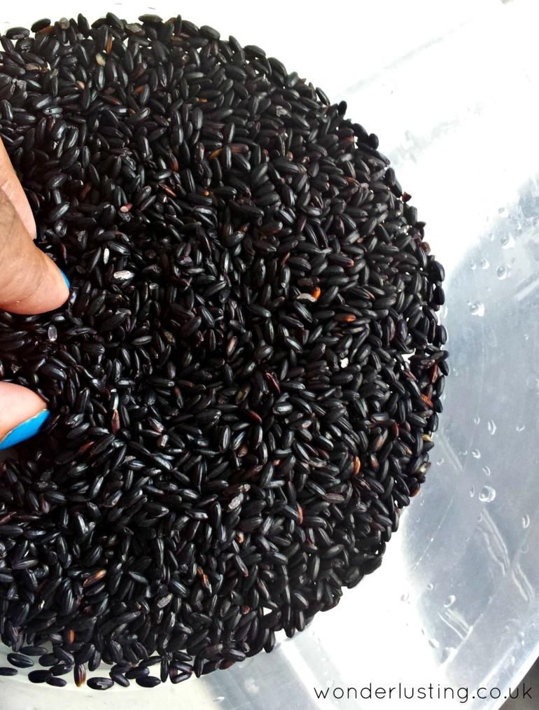 Black rice grains