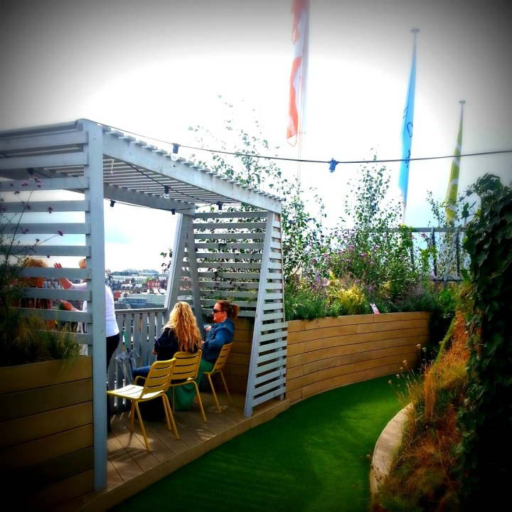 JohnLewisroofgarden4