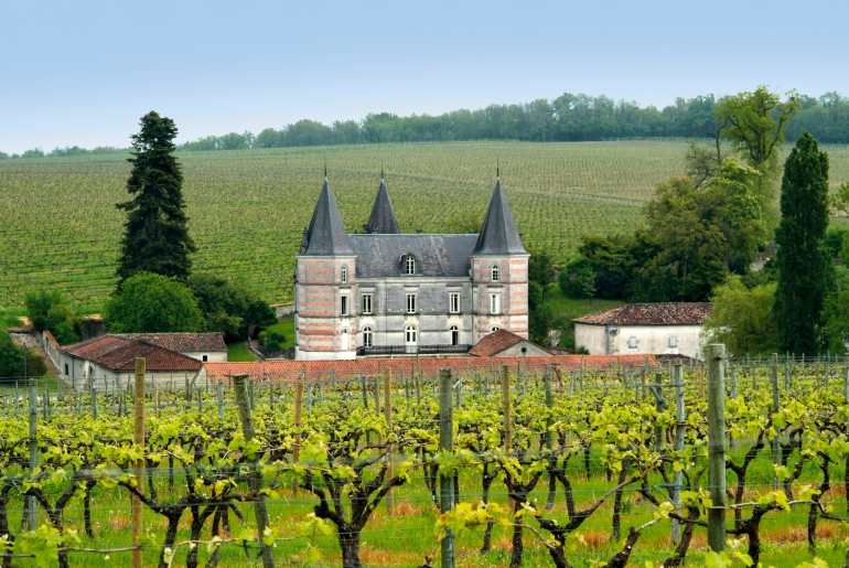 Fontpinot Castle in Segonzac, surrounded by hundreds of acres vineyard