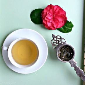 Mirabilia Organic Olive Leaf Tea. Move Over Green Tea, There's A New Tea In Town!