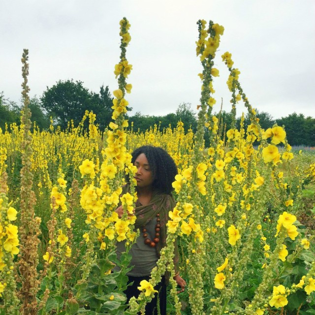 Me in field of mullein