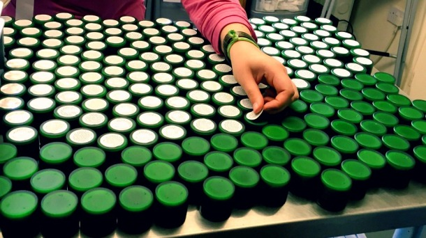 Herbfarmacy jars being labelled by hand