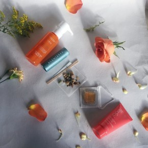 January 2018 MINTD Luxury Beauty BoxReview